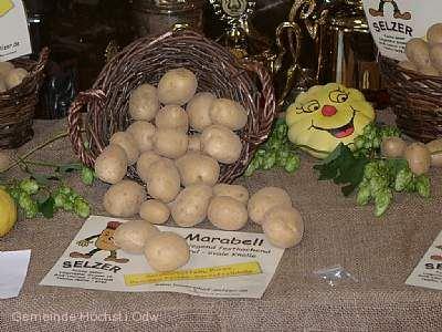 Odenwälder Kartoffelmarkt Höchst i. Odw.