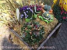 Lampenhainer Dorfmarkt Heiligkreuzsteinach