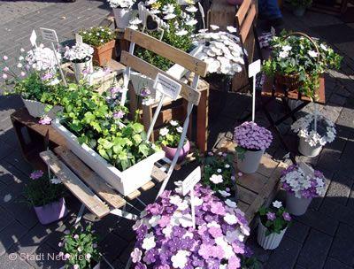 Gartenmarkt Neuwied