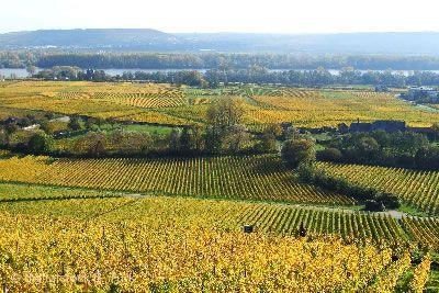 Glorreiche Rheingau Tage Eltville am Rhein