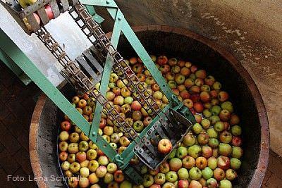 Apfelfest mit Apfelmarkt Neu-Anspach