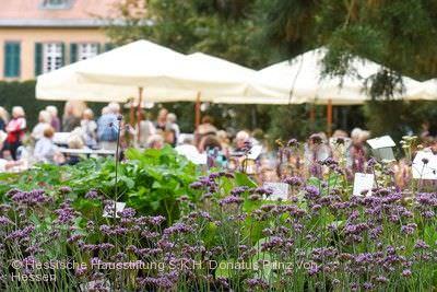 Fürstliches Gartenfest Langen (Hessen)