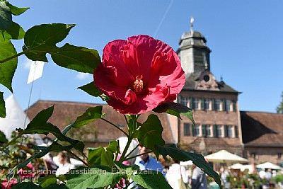 Fürstliches Gartenfest Schloss Wolfsgarten Langen (Hessen)