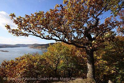 Herbstwanderwoche - Naturerlebnis Edersee Edertal (Edersee)