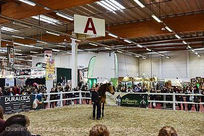 Horsica - Internationale Pferde- und Reitsportmesse Kassel
