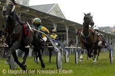 Pferderenntag mit Totalisator Erbach im Odenwald