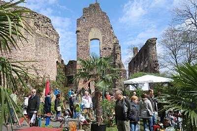 5. Rhein-Main Genuss und Gartenlust Dreieich
