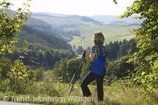 Upländer Wandertag Willingen (Upland)